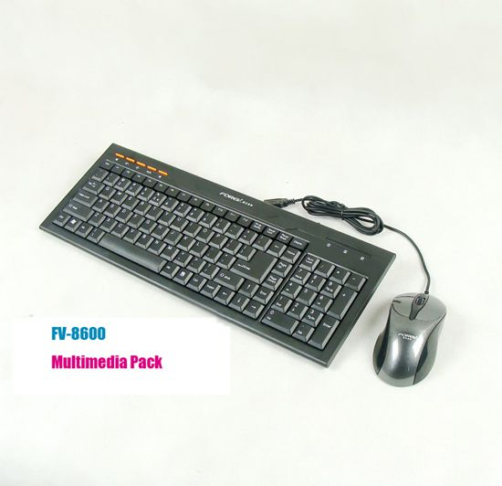 FV 8600 Multimedia Keyboard Mouse Pack